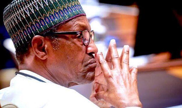 US economist mocks Buhari, describes administration as incompetent