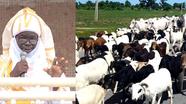 """Why Emir issued killer herdsmen 30-day ultimatum to vacate forests in Taraba The Emir of Muri Empire in Taraba State, His Royal Highness, Abbas Tafida, had at the Eid prayers last Tuesday issued a 30-day ultimatum to killer herdsmen killing and kidnapping people in the state to vacate the forests in the state. While the killer herdsmen to embrace peaceful coexistence with host communities, the Emir warned that the herdsmen may be compelled to vacate Taraba forests if they undermine the ultimatum. The Emir had decried increasing incidence of kidnappings, killings, and attacks on communities, raping of women and girls by killer herdsmen in the state. The Emir lamented that Fulani herders are responsible for violent crimes in the state, insisting that they should vacate forests in the state within 30 days or be forced out. The Emir appealed to Fulani herdsmen leaders to identify the bad eggs among them. The Emir had declared: """"Our Fulani herdsmen in the forests, you came into this state and we accepted you, why, then, will you be coming to towns and villages to kidnap residents, even up to the extent of raping our women? """"Because of this unending menace, every Fulani herdsman in this state have been given a 30 days ultimatum to vacate the forests. """"We are tired of having sleepless nights and the hunger alone in the land is enormous and we will not allow it to continue."""""""