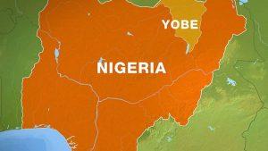 In Yobe, Health Inspectors Shut Illegal Clinic, Arrest Suspected Operator