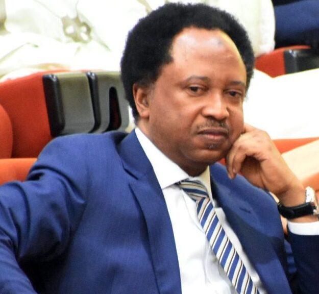 Nnamdi Kanu, Sunday Igboho, Abba Kyari: 'Nigeria Is A Zigzag Republic' – Shehu Sani Blows Hot