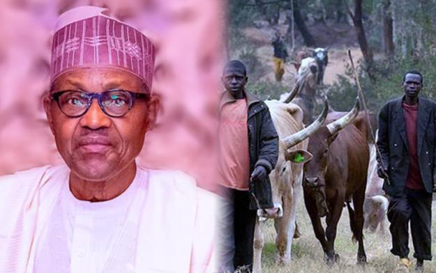 Buhari's support for open grazing 'll break Nigeria, scholar warns