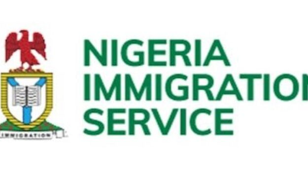 Immigration: We seized Odili's passport for being on EFCC's watch list