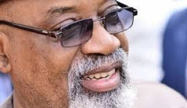 Ngige: Rising unemployment can wipe out Nigeria, elite unsafe