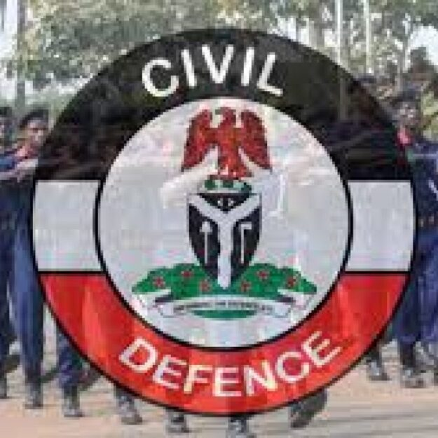 NSCDC arrest 2 suspected armed robbers in Kano
