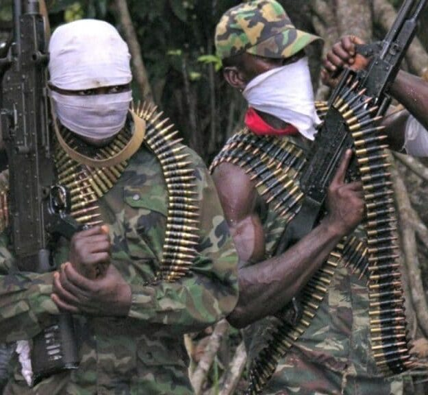 Panic As Gunmen Kidnap Two Poultry Farmers, One Other In Kogi
