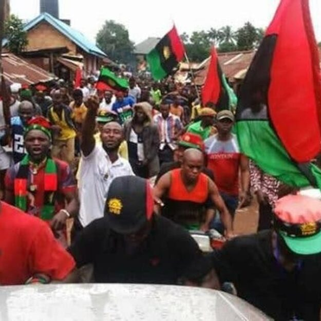 Stop begging S/East politicians for money in our name – IPOB warns scammers