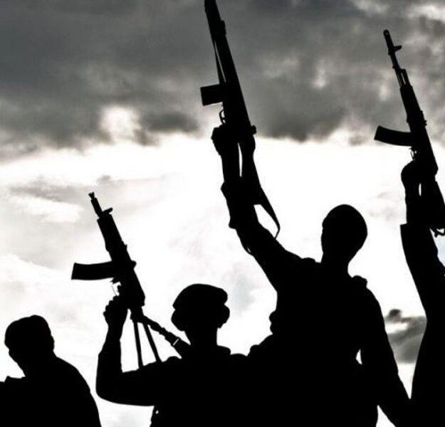 Drug cartel releases kidnapped former NDLEA officer