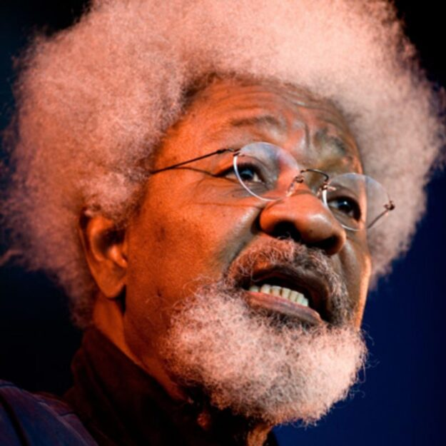 Everything Is The Opposite Yet Nigeria Not A Complete Disaster – Wole Soyinka Speaks