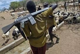 Herdsmen With Ak-47 Kill Woman On Her Farm In Nimbo, Enugu
